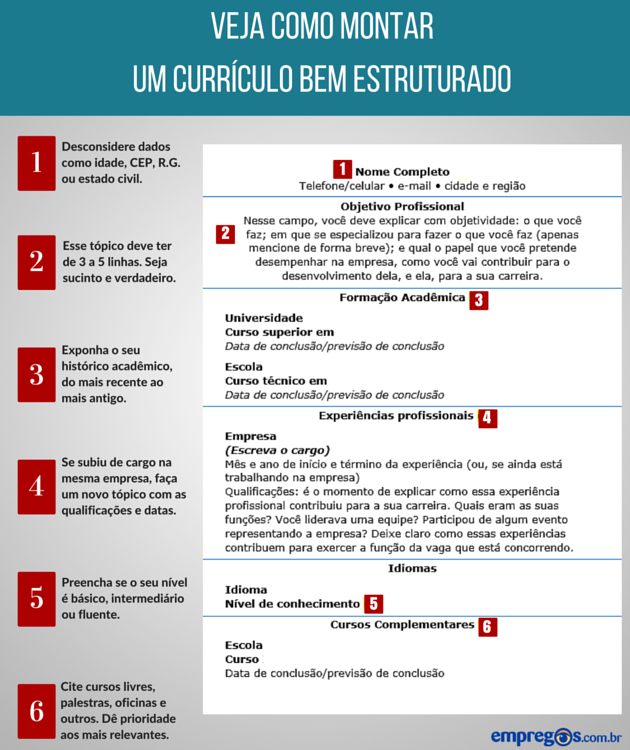 curriculo pronto word
